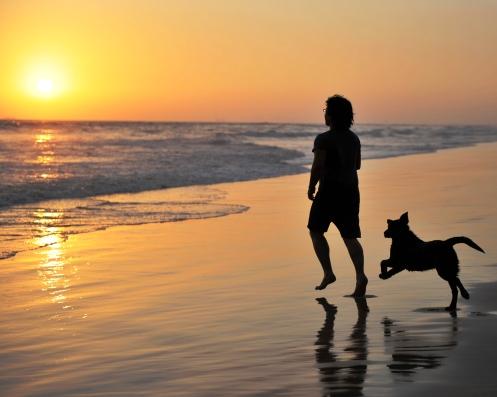 Bolsa Chica Dog Beach